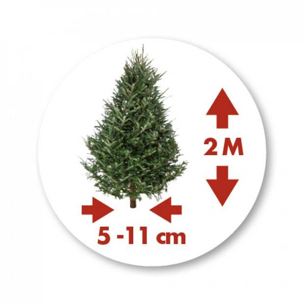 Elho kerstboomstandaard Oslo 38cm groen