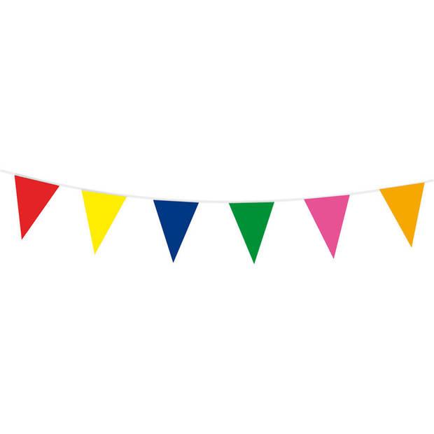 Vlaggenlijn - 10 meter - multikleur