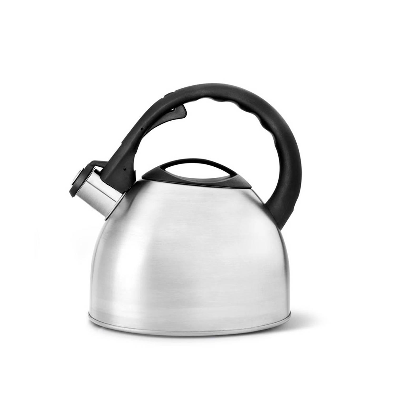 Korting Bredemeijer Universal fluitketel 2,5 liter gematteerd RVS
