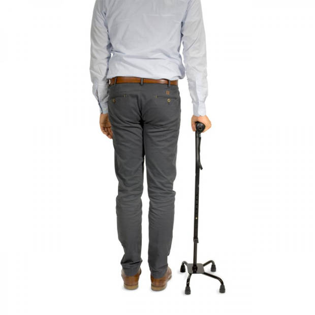 Vitility wandelstok Quadro