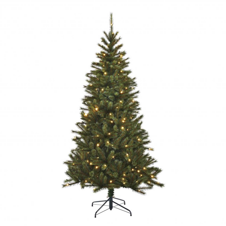 Kerstboom Black Box Trees Led Kingston Pine Slim 185