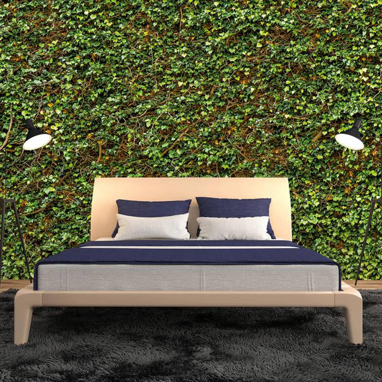 Fotobehang Ivy Wall (366 X 254 Cm)