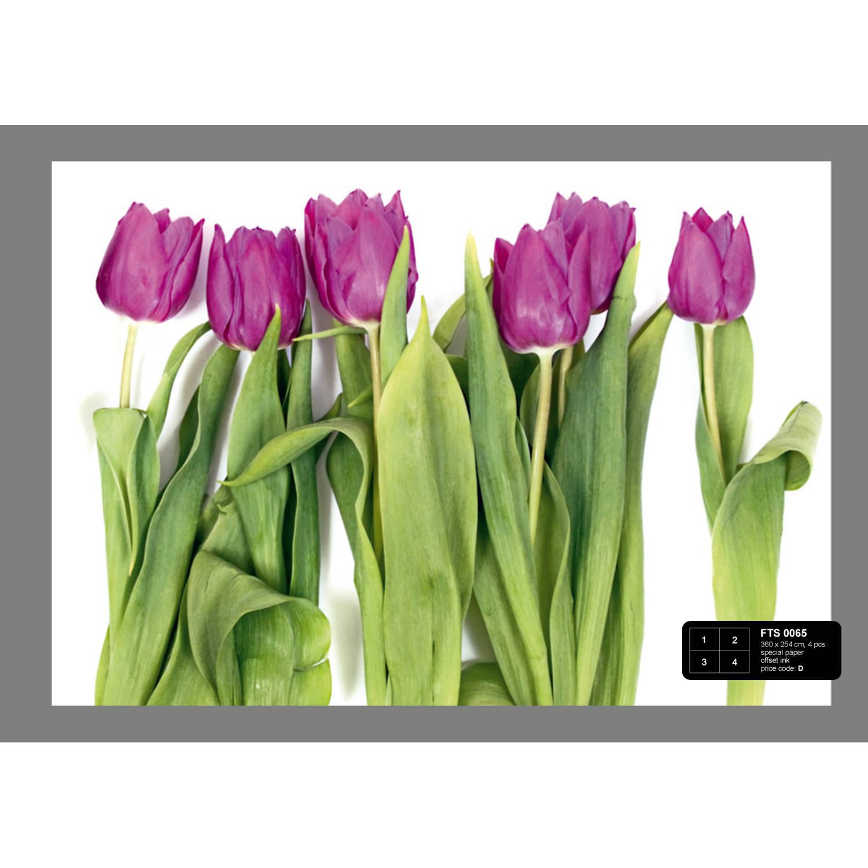 Afbeelding van Violet Tulips Big Fotobehang 4D (AG Design)