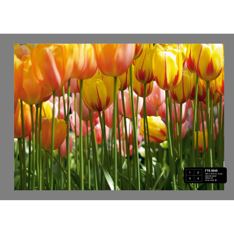 Afbeelding van Tulpin Big Fotobehang 4D (AG Design)