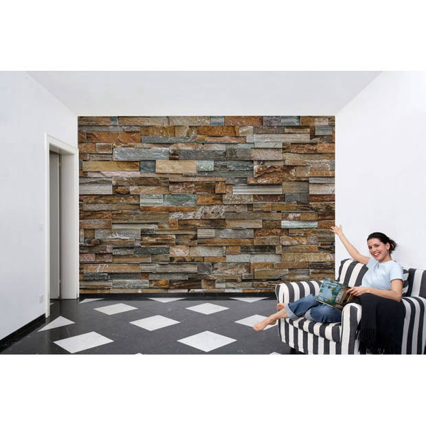 Fotobehang Houten Muur (366 x 254 cm)