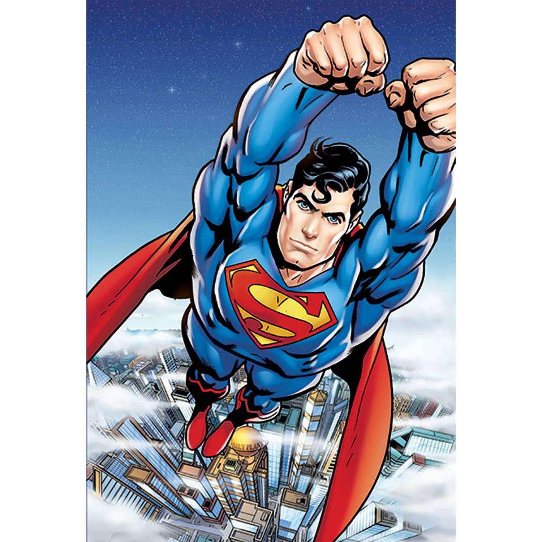 DC Comics Hero - Posterbehang - 232 x 158 cm - Multi