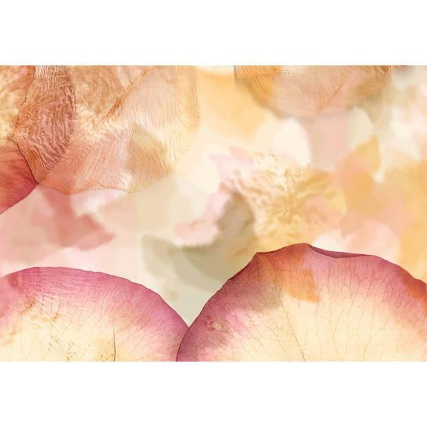 - Dried Flowers - 366 x 254 cm - Multi