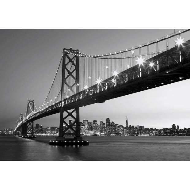 - San Francisco Skyline - 366 x 254 cm - Multi