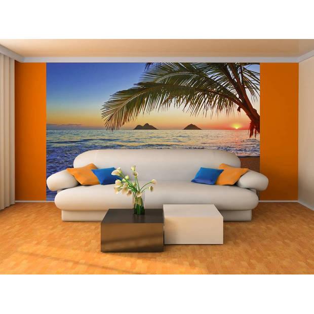- Pacific Sunrise - 366 x 254 cm - Multi