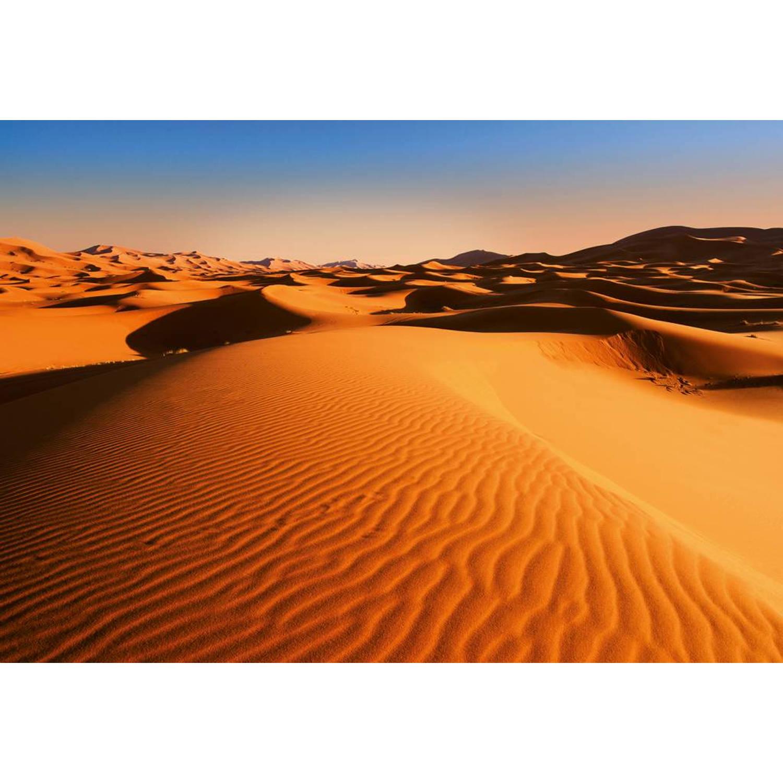 - Desert Landscape - 366 x 254 cm - Multi