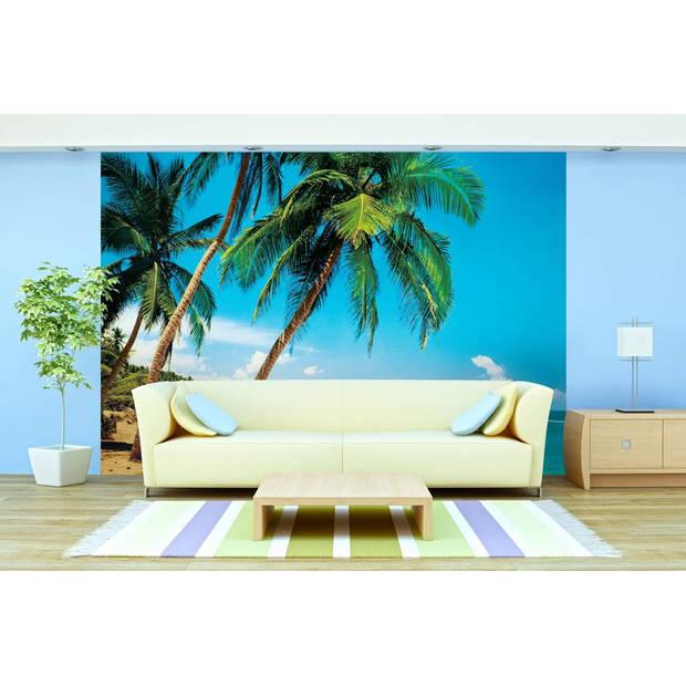 Tropisch Eiland - 366 x 254 cm - Multi