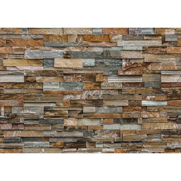 - stenen muur - 366 x 254 cm - multi