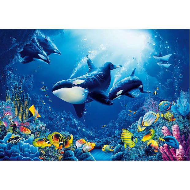 Fotobehang Orca (366 x 254 cm)