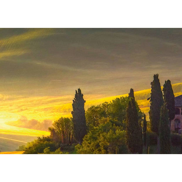 - Toscane - 366 x 254 cm - Multi