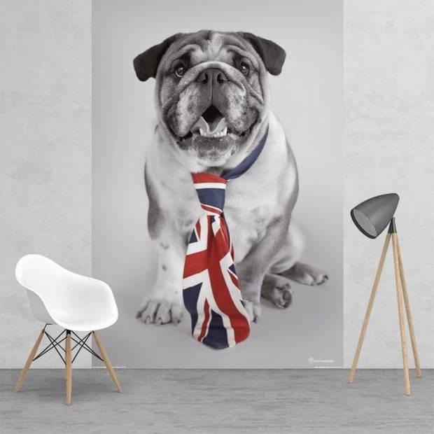 Dog - Fotobehang - 158 x 232 cm - Multi