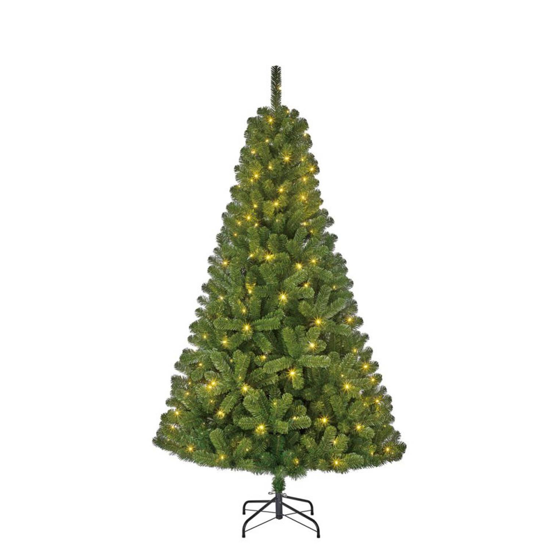 Black Box kerstboom met verlichting Charlton 215 cm