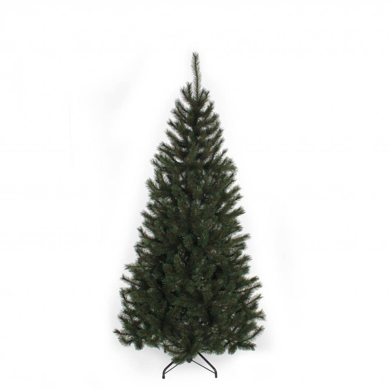 Black Box kerstboom Kingston 215 cm