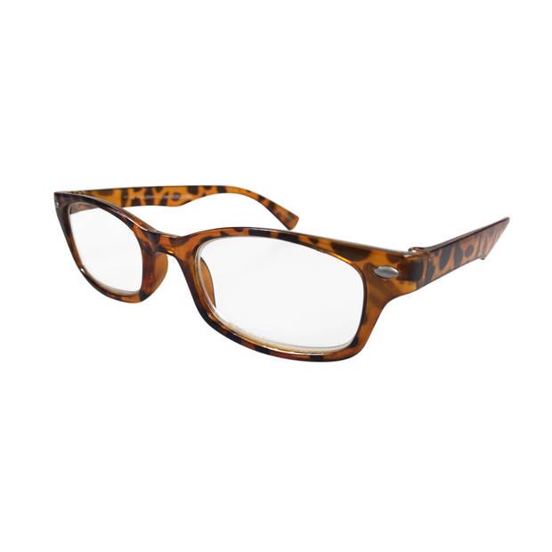 Leesbril Shiny Demi Sterkte 2