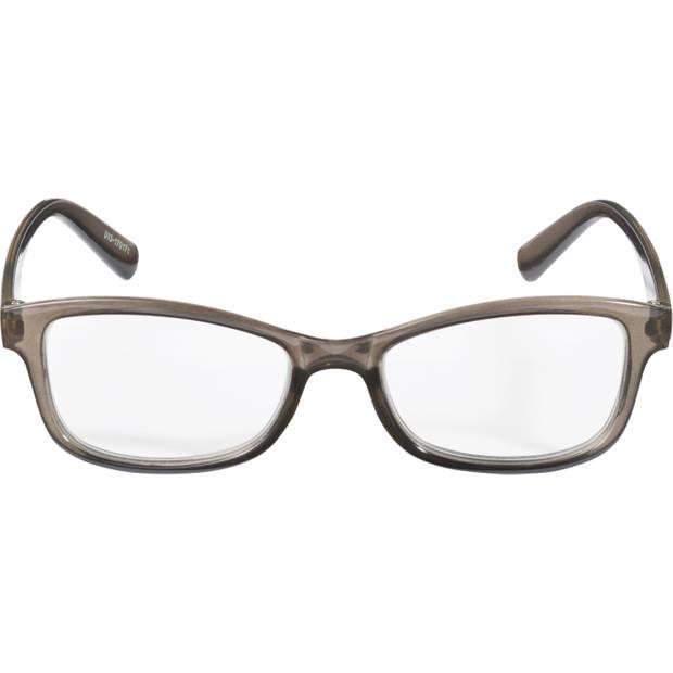 Leesbril Trans Grijs Sterkte 1