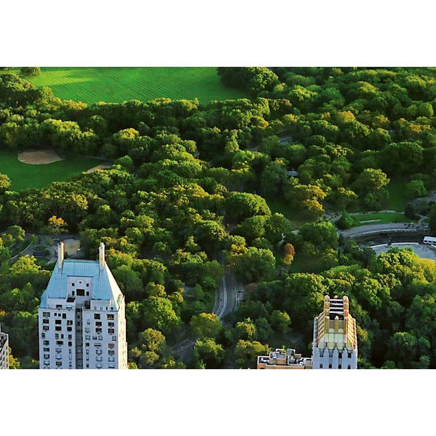 - Central Park - 366 x 254 cm - Multi