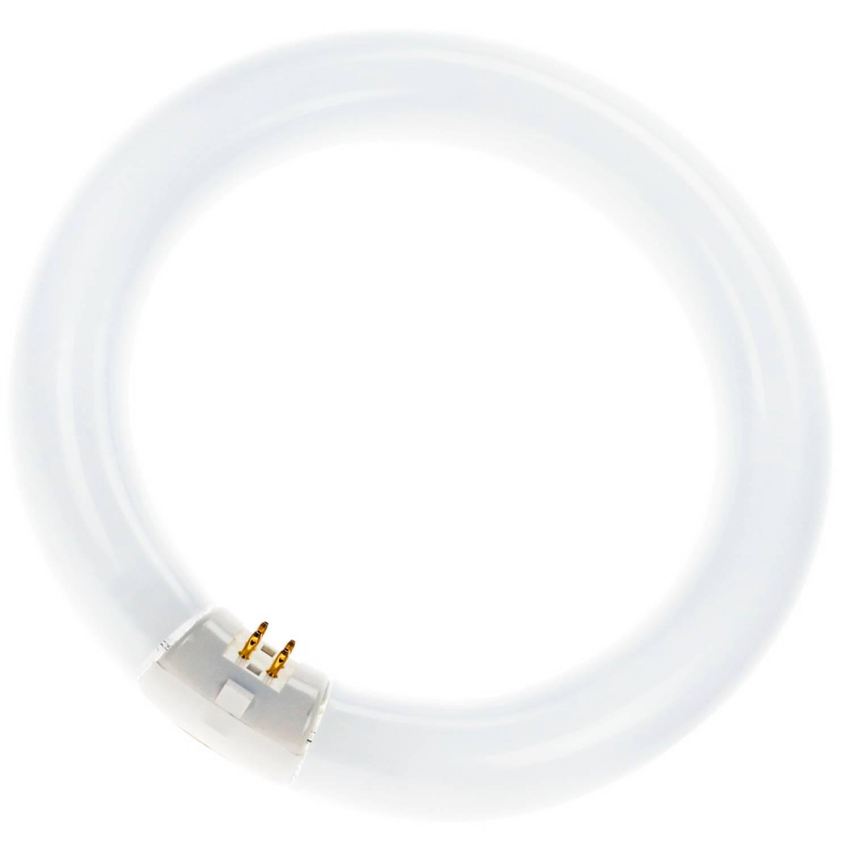 Sylvania TL Circline BL368 UV-A G10q 22W Blacklight 0000456