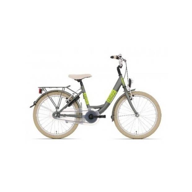 Bike Fun Blizz 20 Inch 33 cm Meisjes V-Brake Mat Groen