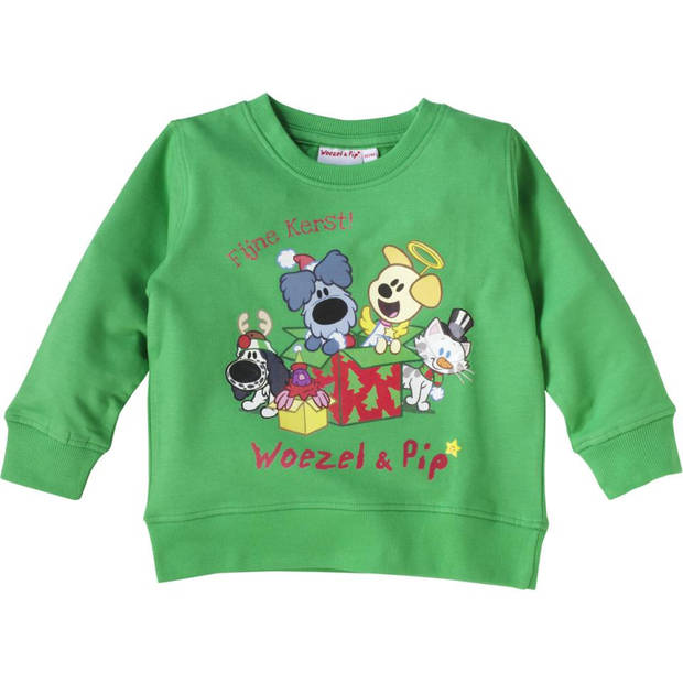 Woezel & Pip Kersttrui - maat 104-110 - groen