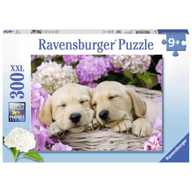 Ravensburger puzzel XXL schattige hondjes in mand - 300 stukjes