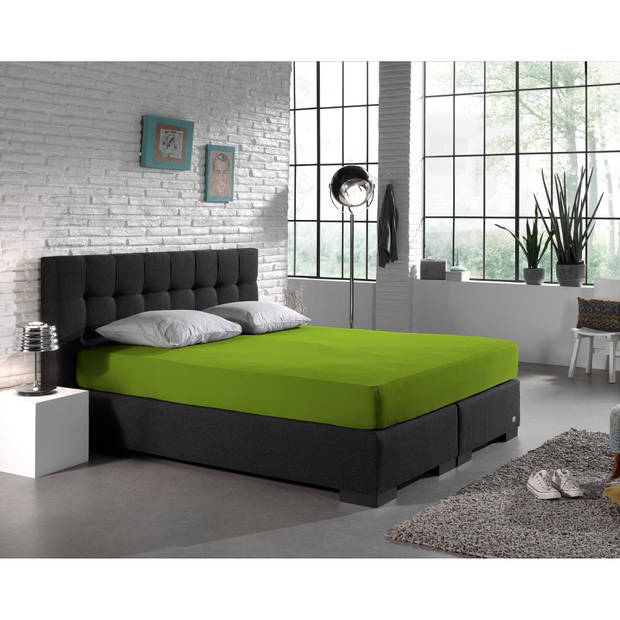Dreamhouse Bedding HSL HC Jersey 220 gr. Green 160/180x200/