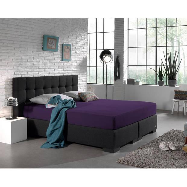 Dreamhouse Bedding HSL HC Jersey 220 gr. Purple 160/180x200