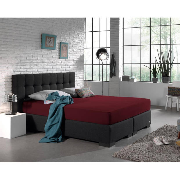 Dreamhouse Bedding HSL HC Jersey 220 gr. Bordeaux 160/180x2