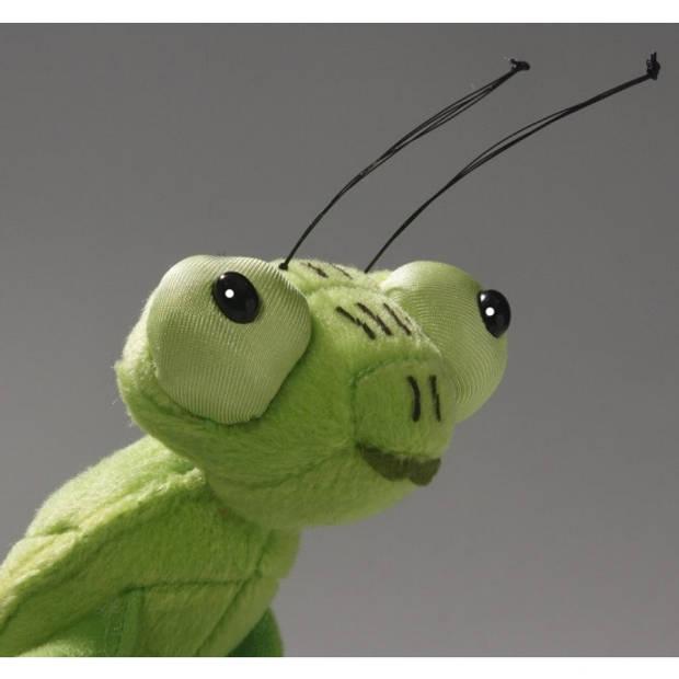 Bid sprinkhaan insecten knuffel 35 cm - decoratie dieren/beesten