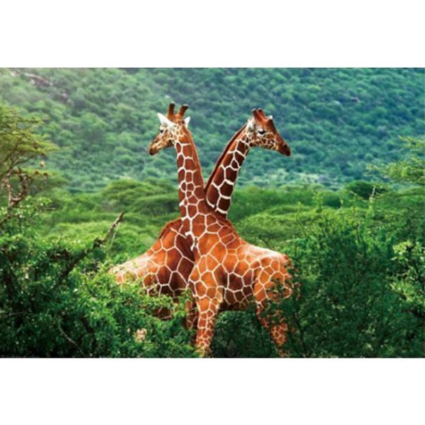 Placemat giraffe 3D 28 x 44 cm