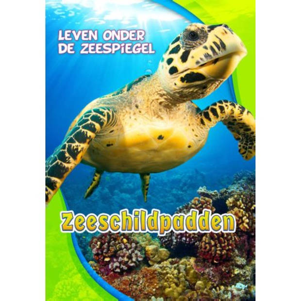Zeeschildpadden - Leven onder de zeespiegel