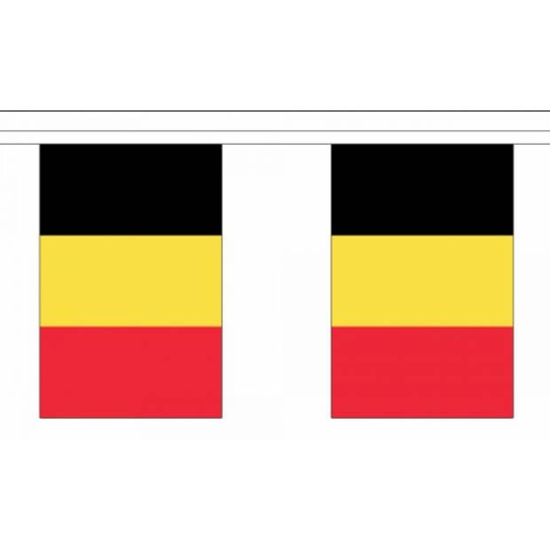 Luxe Belgie vlaggenlijn 9 m