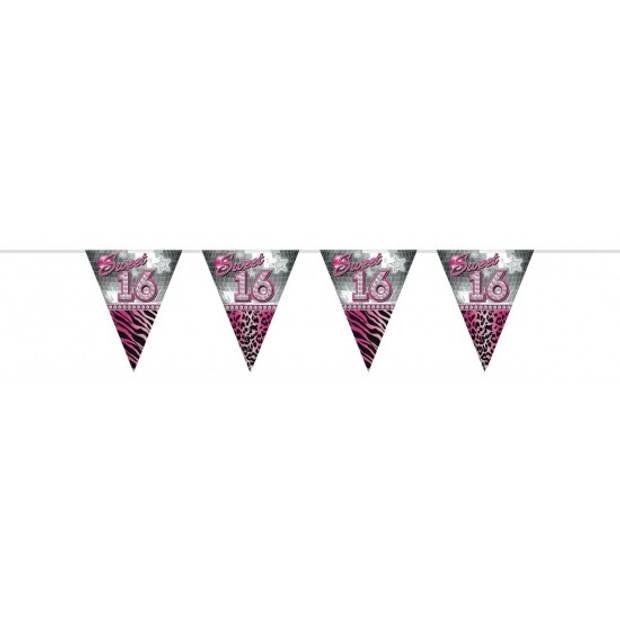 Leeftijd vlaggenlijn sweet 16 van 10 meter