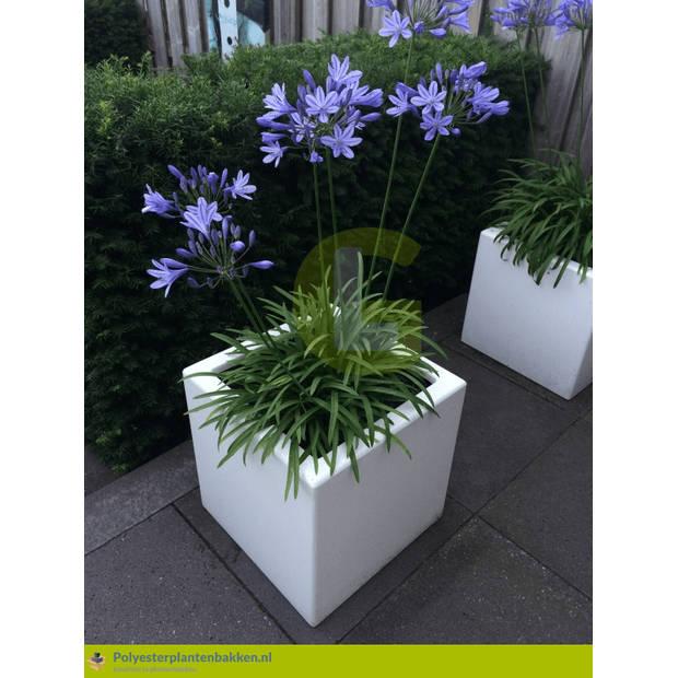 Green-lab Polyester plantenbak 40x40x40 cm zuiver wit