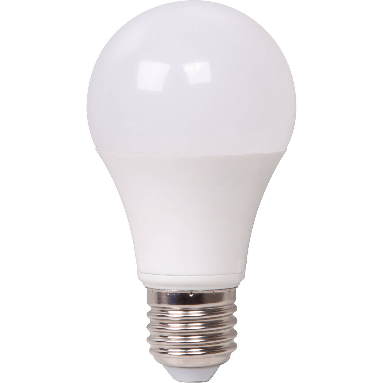 LED Bulb E27 13W warm wit XQ13160