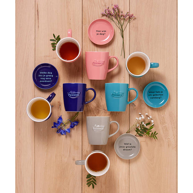 Pickwick Tea Topics mok - 38 cl - grijs