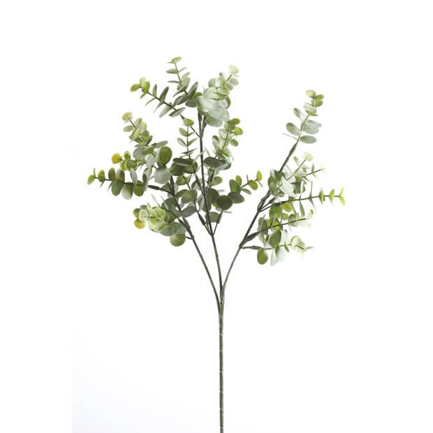 Blokker kunstbloem Eucalyptus - 70 cm