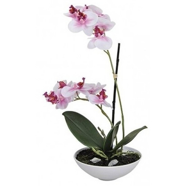 Kunstplanten in pot roze orchidee 25 cm - Wit/roze Phalaenopsis in bloempot 25 cm