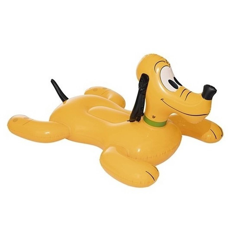 Zwembad hond kopen online internetwinkel for Afdekzeil zwembad blokker