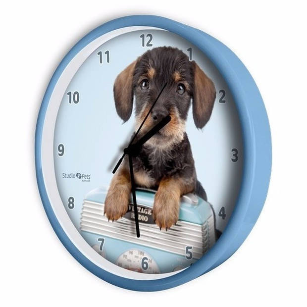 Honden wandklok Teckel blauw 25 cm