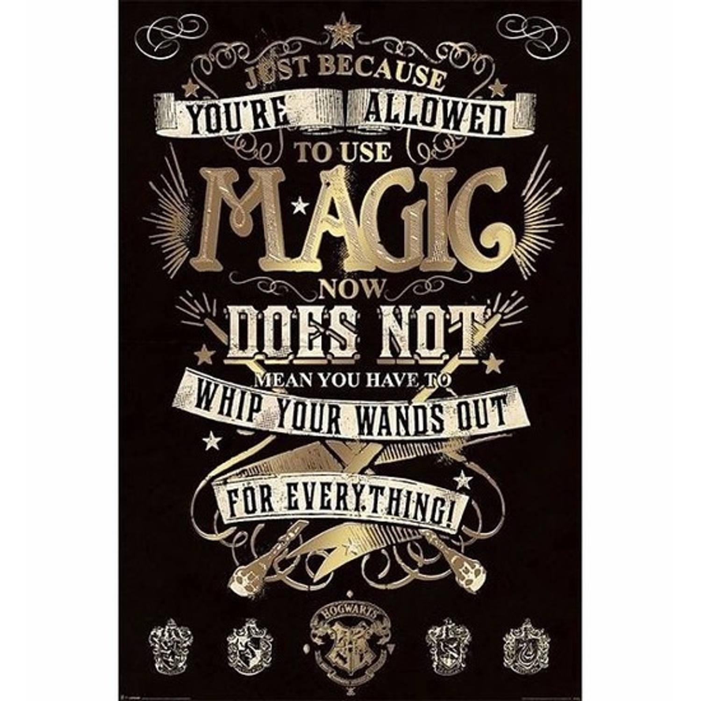 Filmposter Harry Potter Magie 61 X 91 Cm