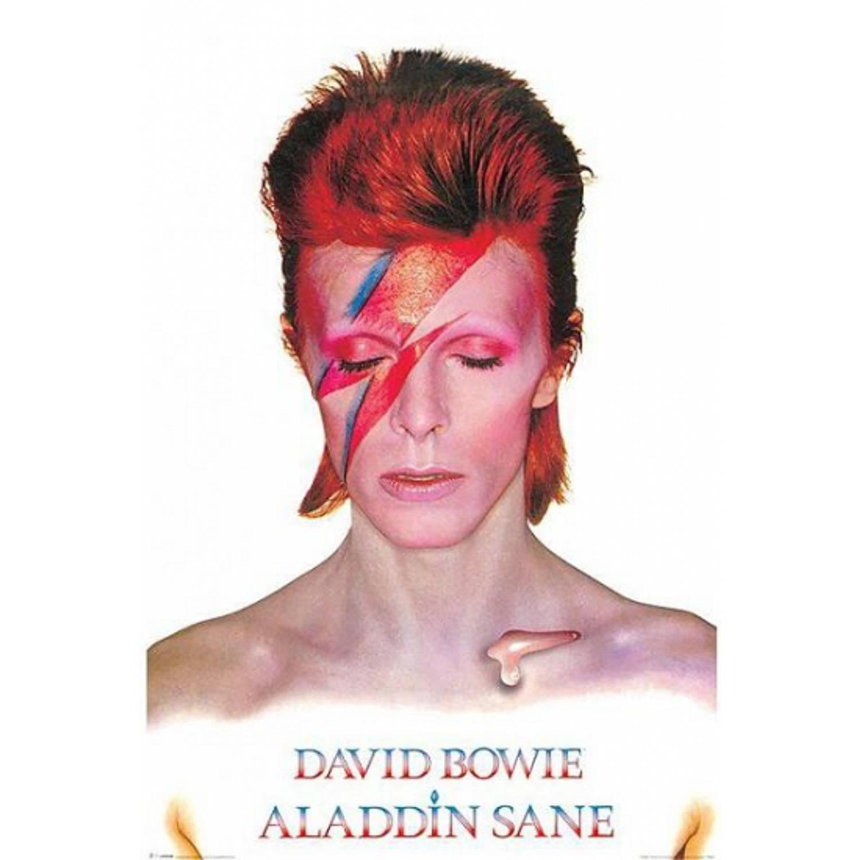 Poster David Bowie Aladdin Sane 61 X 91,5 Cm