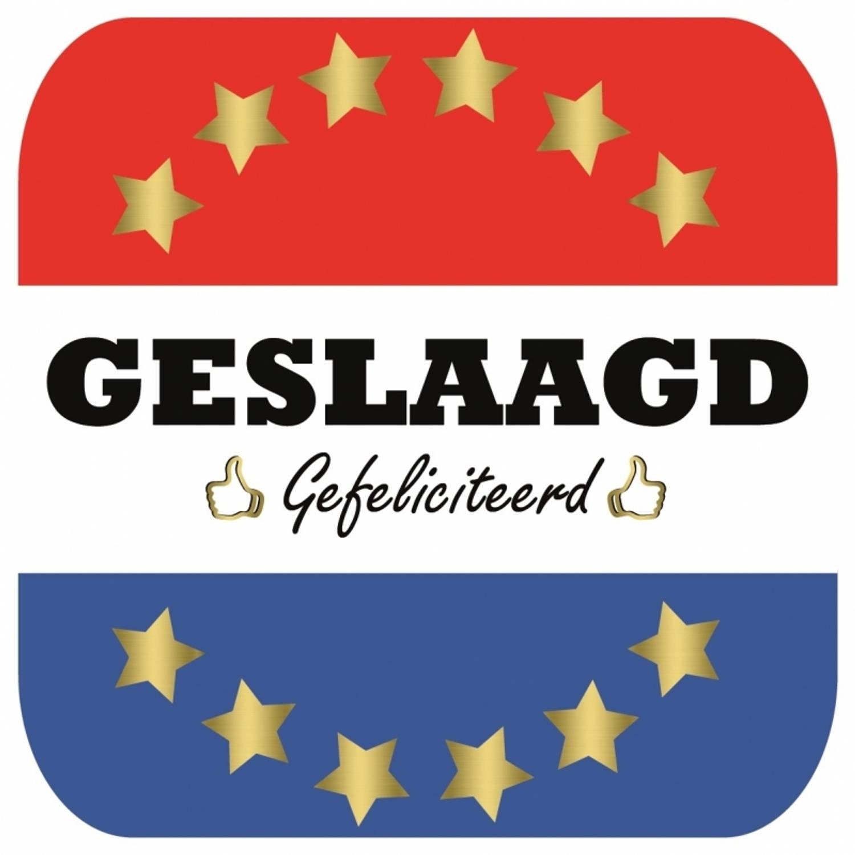 15x Bierviltjes Geslaagd Nederlandse Vlag Vierkant - Diploma/geslaagd/afgestudeerd Feestartikelen
