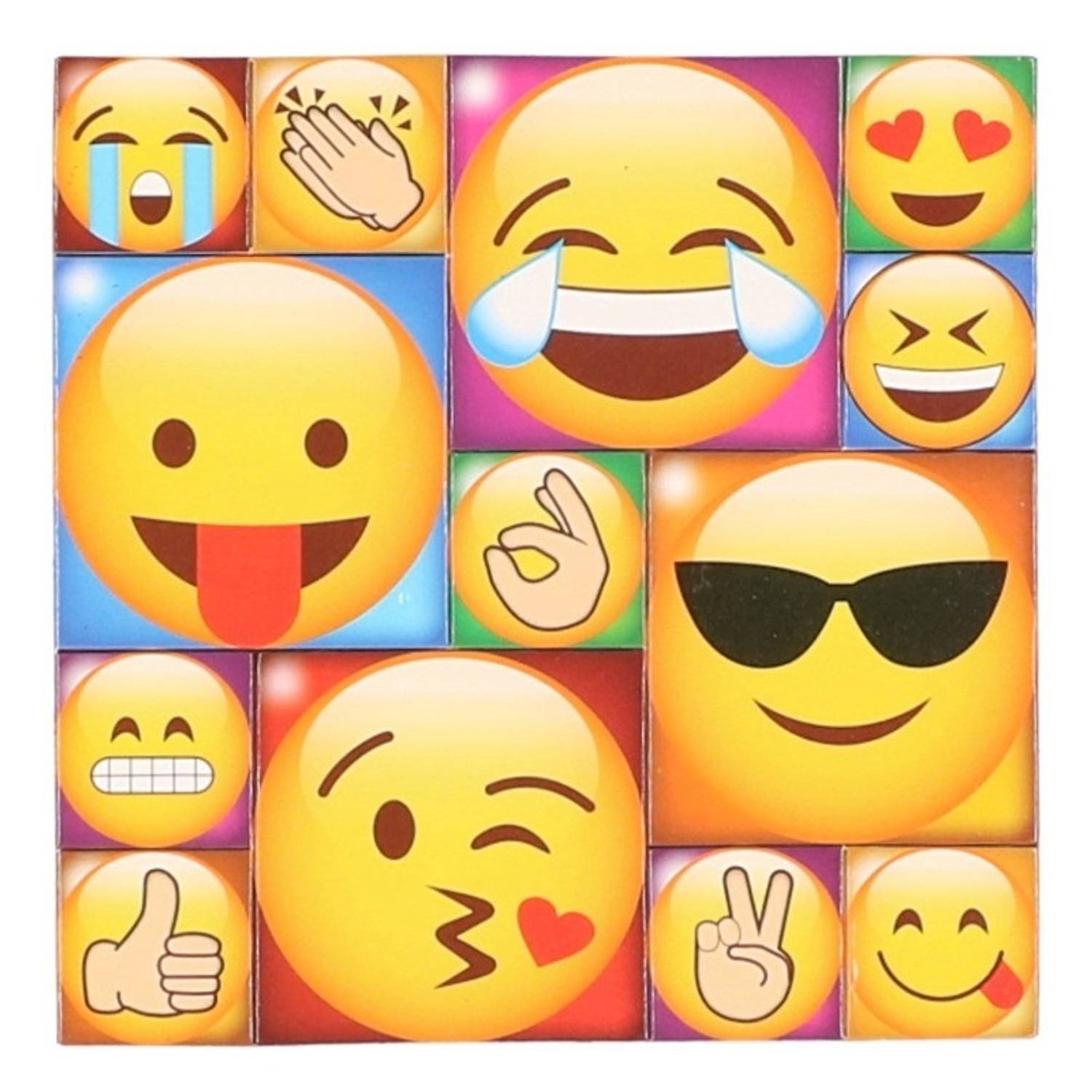 13x Emoji smiley memo magneten type 2