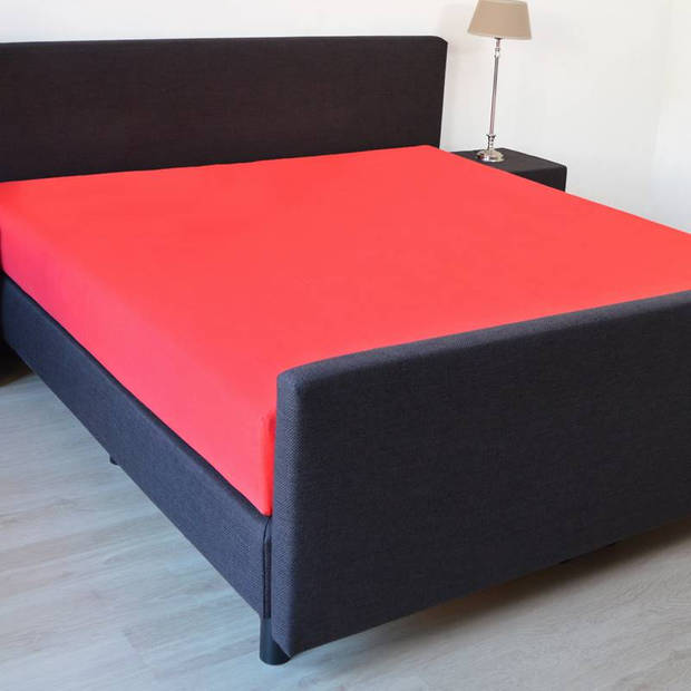 Snoozing - Hoeslaken -90x220 - Percale katoen - Rood