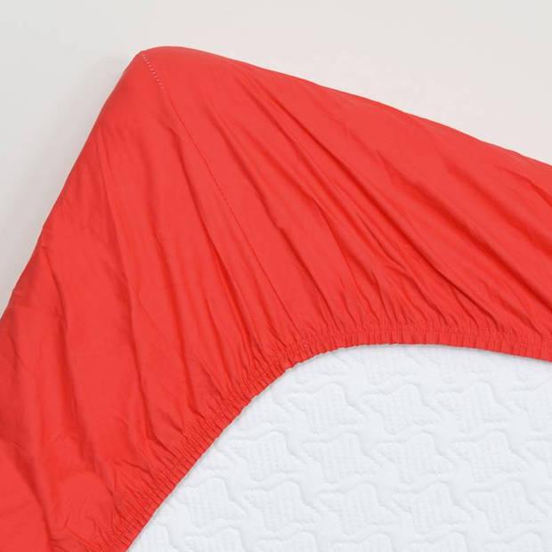 Snoozing - Hoeslaken -90x210 - Percale katoen - Rood
