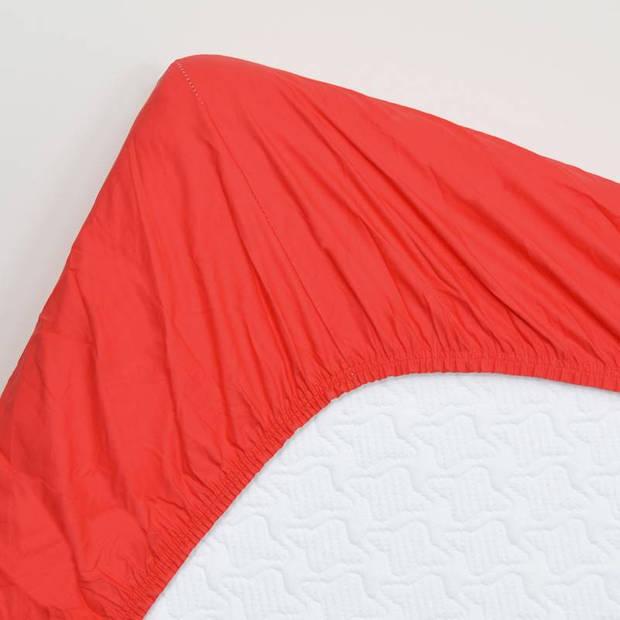 Snoozing - Katoen-satijn - Topper - Hoeslaken - 100x220 - Rood